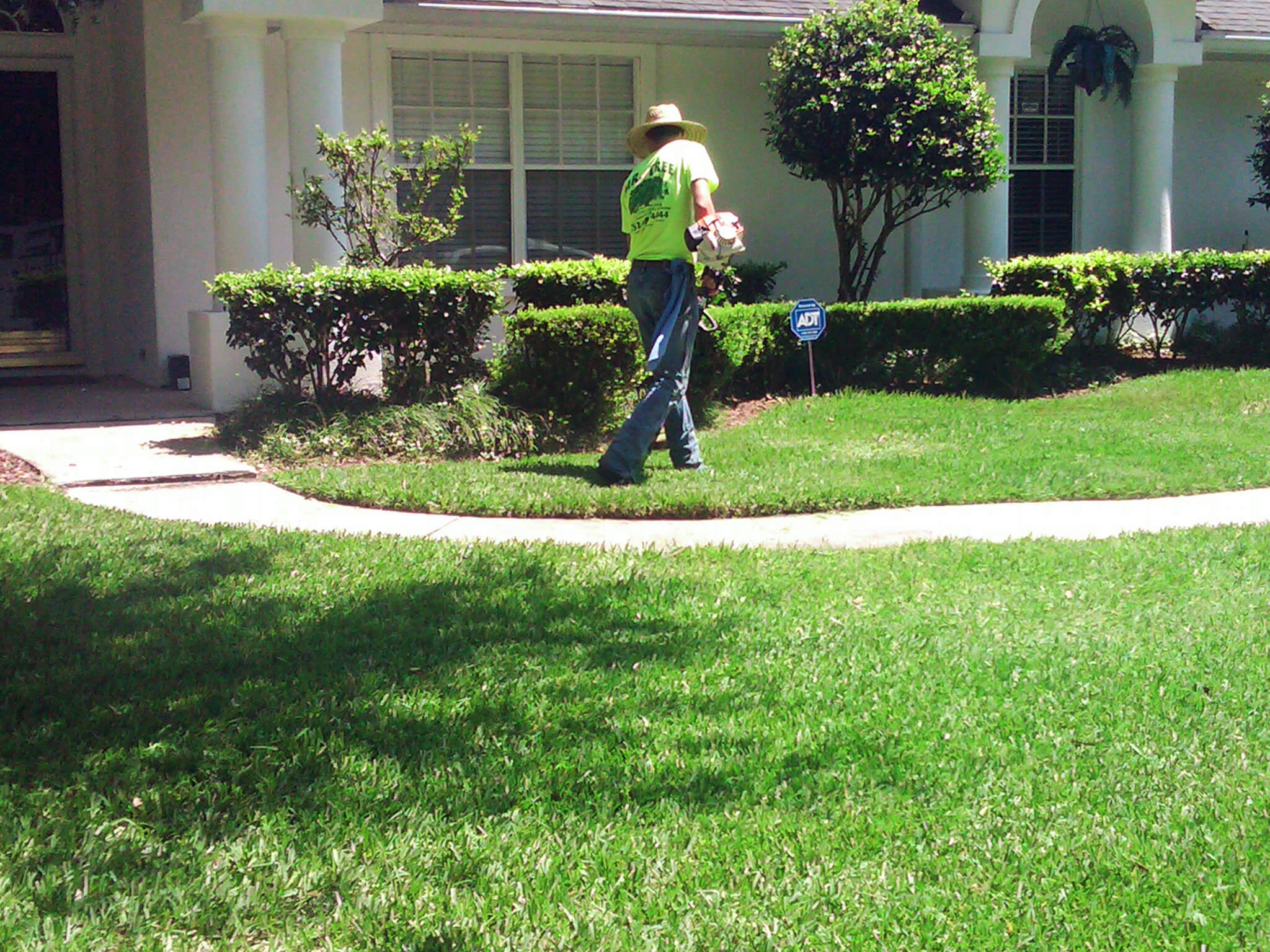 Lawn care gainesville fl mowing pruning mulching lawn for Landscaping services