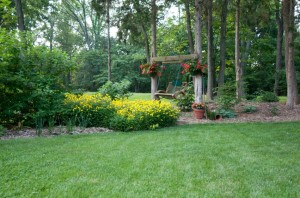 landscaping and lawn care in Gainesville