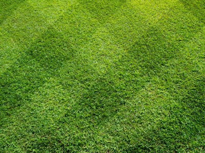 Gainesville Lawn Care