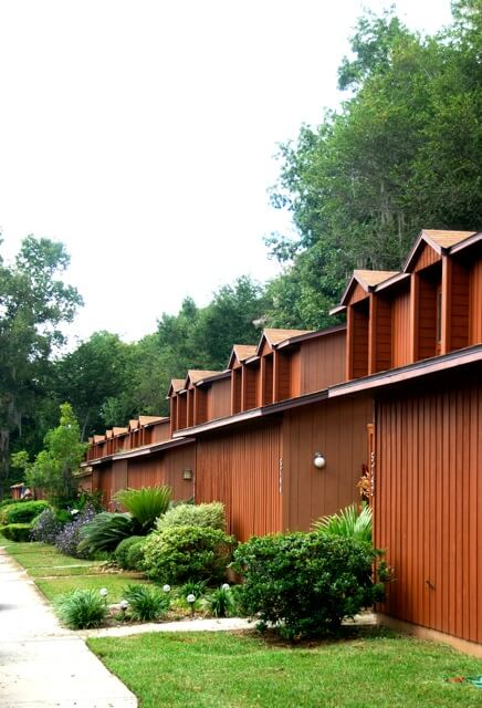 Tree Services And Lawn Care For Gainesville Apartments
