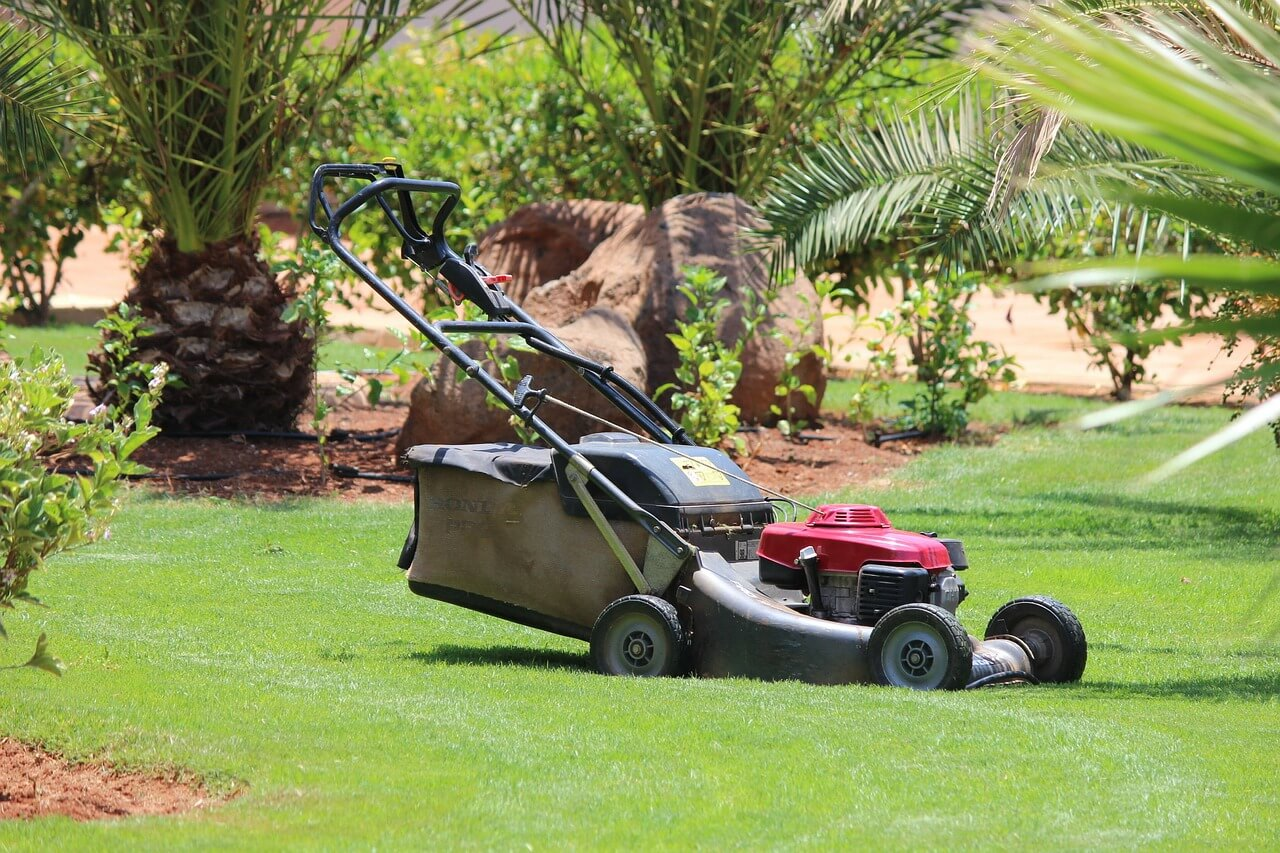 Gainesville lawn mowing for Lawn maintenance service