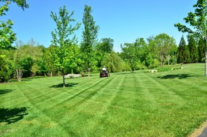 Gainesville lawncare referrals