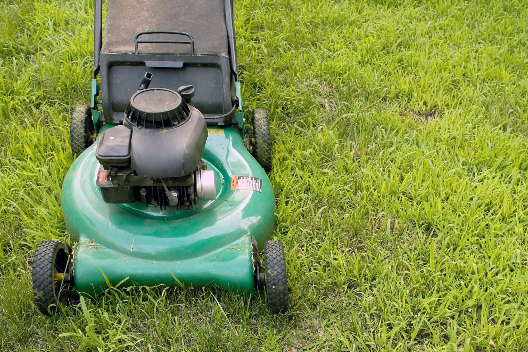 Lawn care blog mr tree and lawn service in gainesville fl for Lawn mower cutting grass