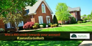 lawn and garden month contest