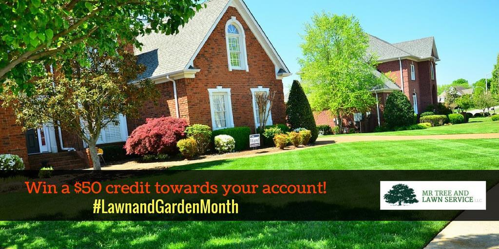 Lawn and garden giveaway gainesville lawn service for Lawn and garden services