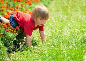 boy crawling in flowers